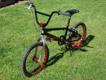 http://bmxmuseum.com//image/2008_se_racing_pk_ripper_ltd_edition_009.jpg
