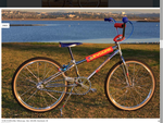 http://bmxmuseum.com//image/midschool_bmx_cruisers__1988_to_2000__bmx_society_communit_4.png