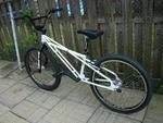 https://bmxmuseum.com//image/museum-bikes-0115b72350ec0.jpg