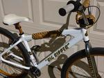http://bmxmuseum.com//image/se-bikes-004560310f9b6.jpg