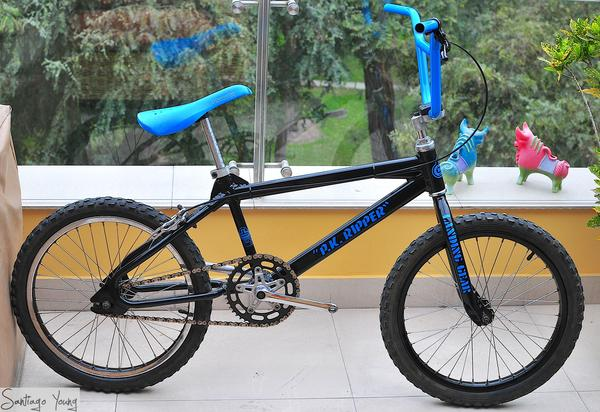 SE Racing PK Ripper Blue Decals