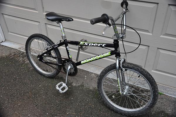 1994 Mongoose Expert