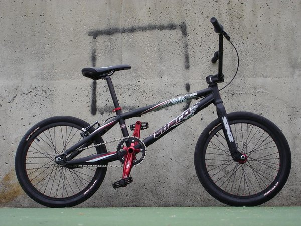 2010 Haro Team Issue