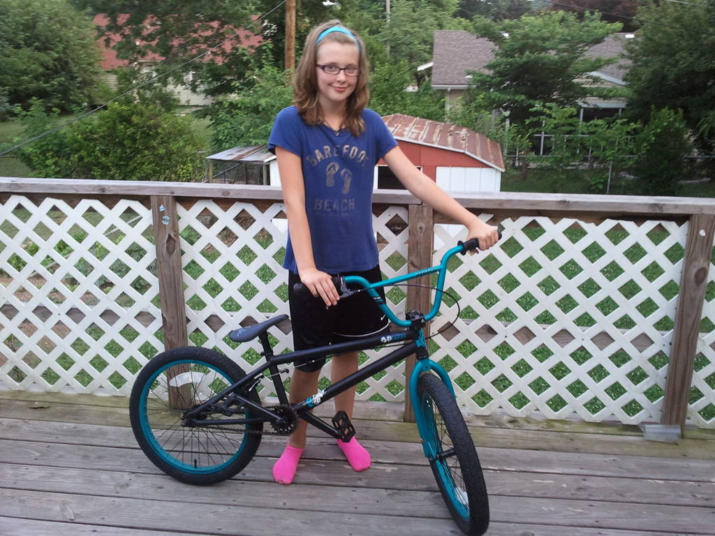 Stolen casino bmx bikes for sale