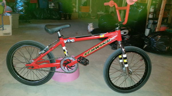 1999 Schwinn Pro Stock 1 Troy Lee