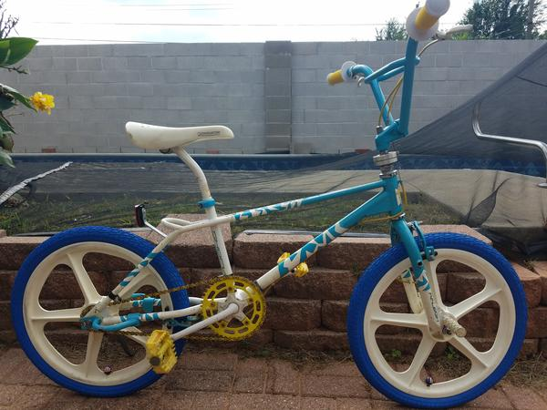 1987 Raleigh Shock