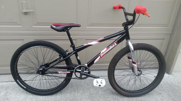 2001 Diamondback Assault 24