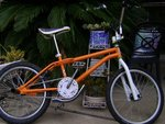 http://bmxmuseum.com/image/bikes_freestyle_085.jpg