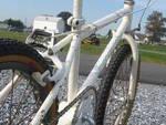 http://bmxmuseum.com/image/bmx_bikes_093.jpg
