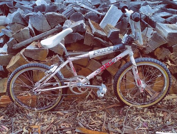 1990 Cycle Craft Pro XL