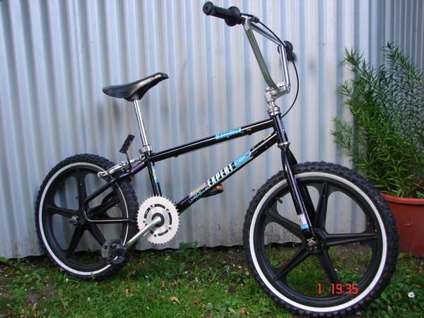 1989 Mongoose Expert Comp