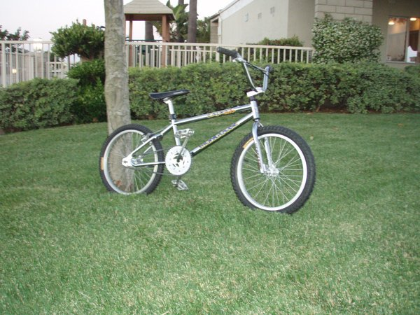 1994 Mongoose Expert Comp