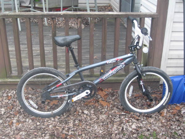 2010 Mongoose Ravage