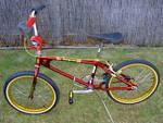 http://bmxmuseum.com/image/my_bikes_004_copy0.jpg