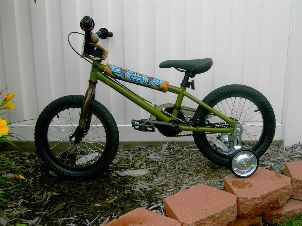 2007 Se Racing Lil Wildman 16