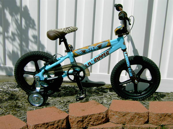 Spin Bikes For Sale >> 2009 SE Racing Lil' Ripper 16 - BMXmuseum.com