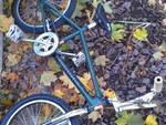 http://bmxmuseum.com/image/sm_dirt_bike_10.2012.jpg